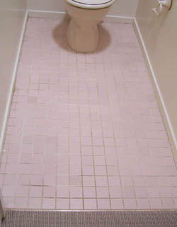 tile toilet renovation before